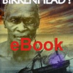 Sink the Birkenhead! eBook